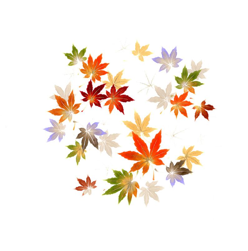 新塩瀬帯 秋の柄「彩紅葉」 白地