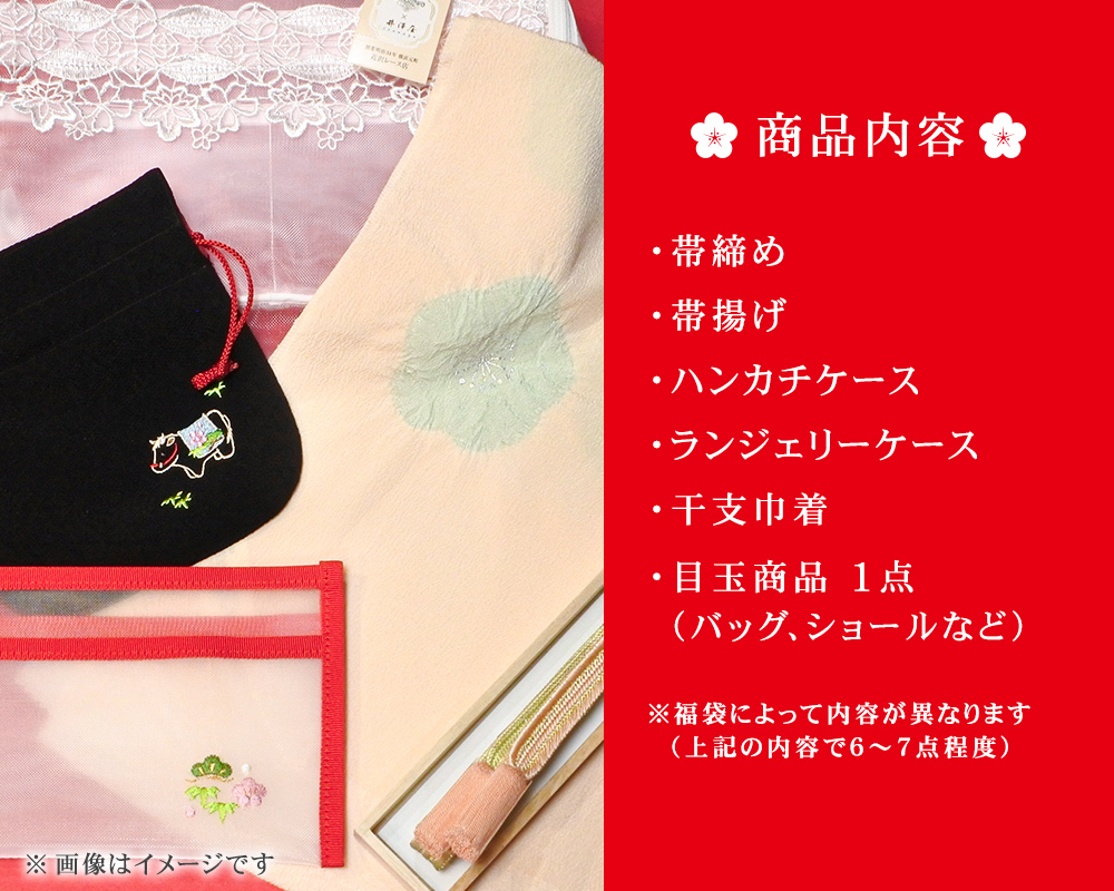 【限定10点】 井澤屋の福袋 2021年分
