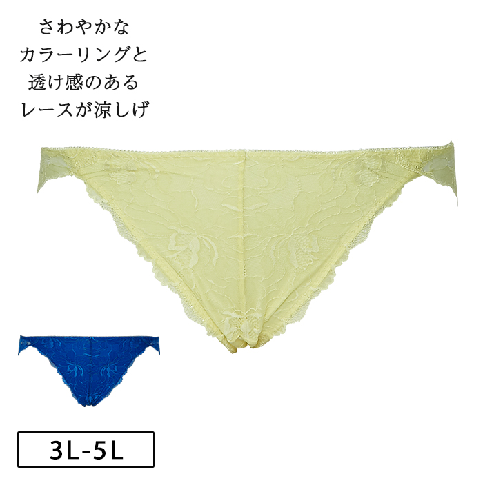 【グラマープリンセス】しっかりホールド・美胸キーパーペアショーツ(イエロー/ブルー)