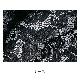 【Lingerie×タイニープリンセス】デイリーブラレットペアショーツ(カーキ/ブラック) ミヤマアユミ スタンダードショーツ パンティー S M 下着 レディース 女性 パンツ パンティ レディースショーツ ショーツ