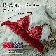 【タイニープリンセス】特別な日ランジェリー・ブラレット(レッド/ネイビー) ブラレット 小さいサイズ 小胸 女性下着 ランジェリー 下着 S M クリスマス イベント プレゼント