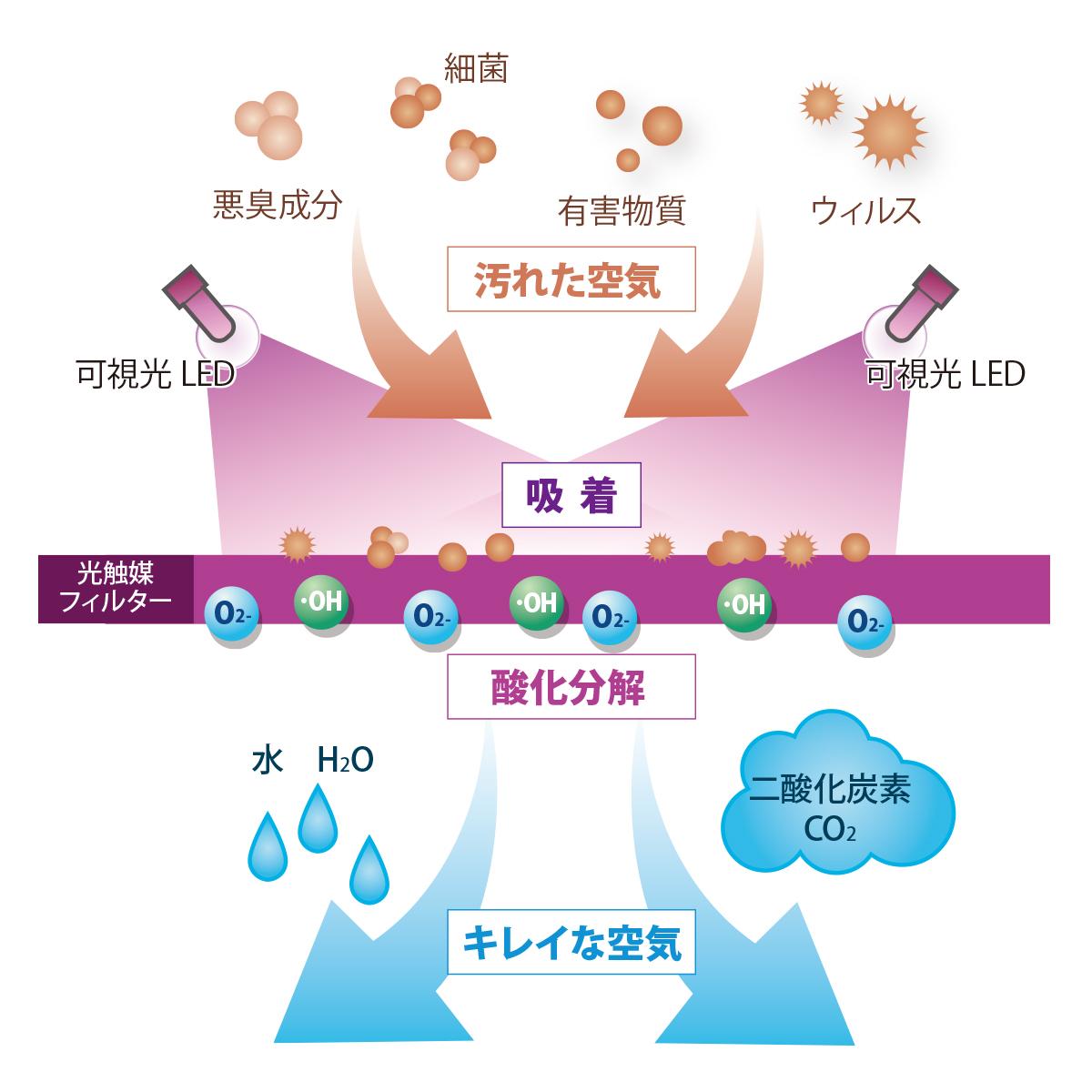 【正規代理店】光触媒除菌・脱臭LED電球 ターンドケイ