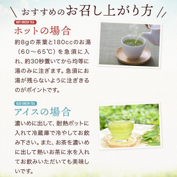 千茶荘  玉真 100g × 3本  【メール便 ご自宅用】
