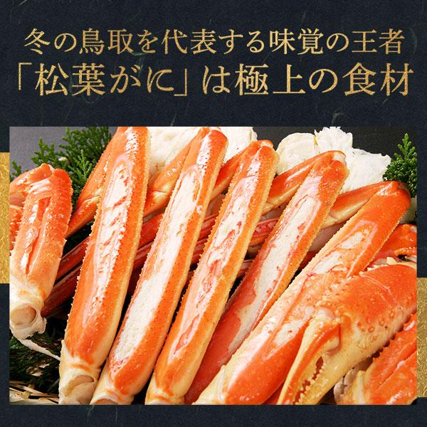 鳥取県賀露港産 浜ゆで松葉がに 中(約600g) 11月10日以降の発送