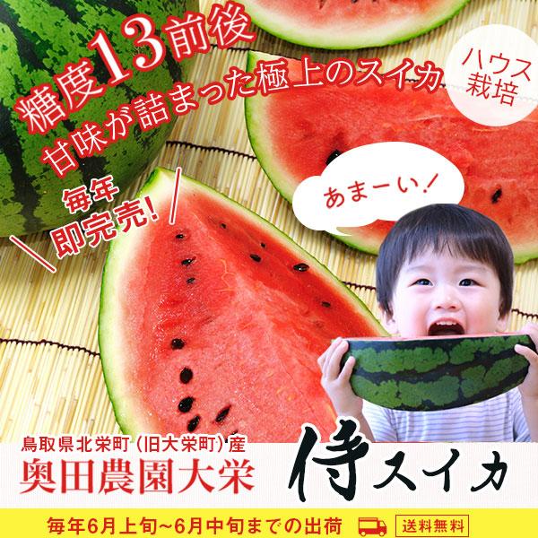 侍スイカ 2Lサイズ(7kg以上) ハウス栽培 送料込