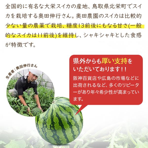 侍スイカ 3Lサイズ(8 kg以上) ハウス栽培 送料込