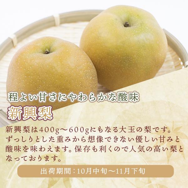 岸田秀果園 梨「新興」5kg 贈答用(出荷期間:10月中旬〜11月下旬)