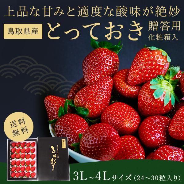 鳥取県オリジナルいちご「とっておき」 贈答用 3L〜4L 24粒〜30粒