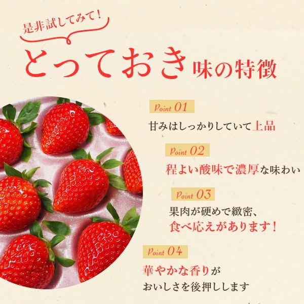 鳥取県オリジナルいちご「とっておき」 贈答用 3L〜4L 12粒〜15粒