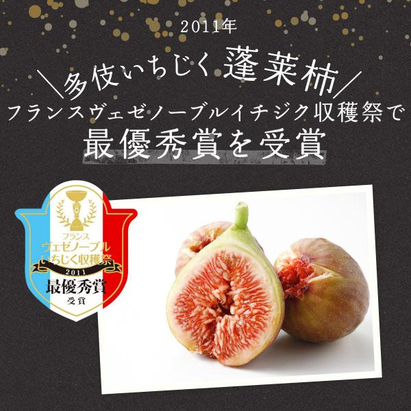 干しいちじく (蓬莱柿) 100g×5個 JAしまね多伎加工所