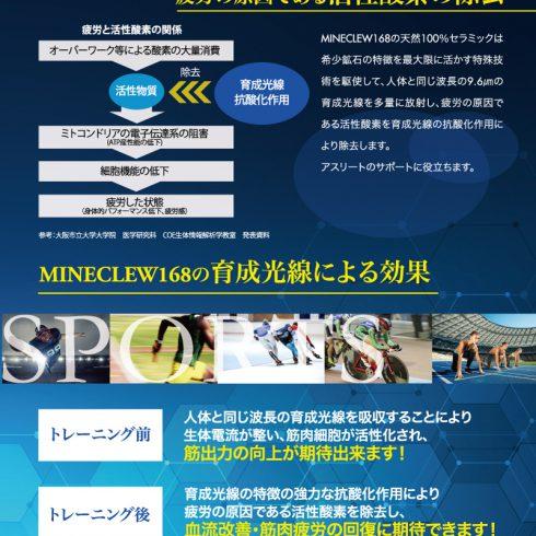 MINECLEW168 ミネラルマッサージクリーム 110g×12本セット【送料無料】