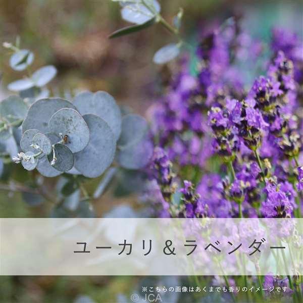 香料 ユーカリ&ラベンダー 日本製 50ml/100ml