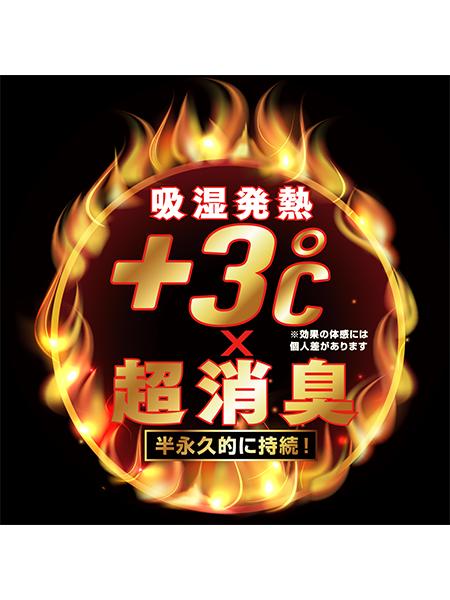【Z-DRAGON】 78124 ハイネックロングスリーブ [2020年秋冬]<名入れ刺繍加工不可>