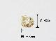 NDT-0209 シェルペンダントトップ5 (40.0×35.5) 【日本製,アクセサリー土台,グルーデコアクセサリー,クレイ土台,ハンドメイド,ホビー,ノーニッケル】
