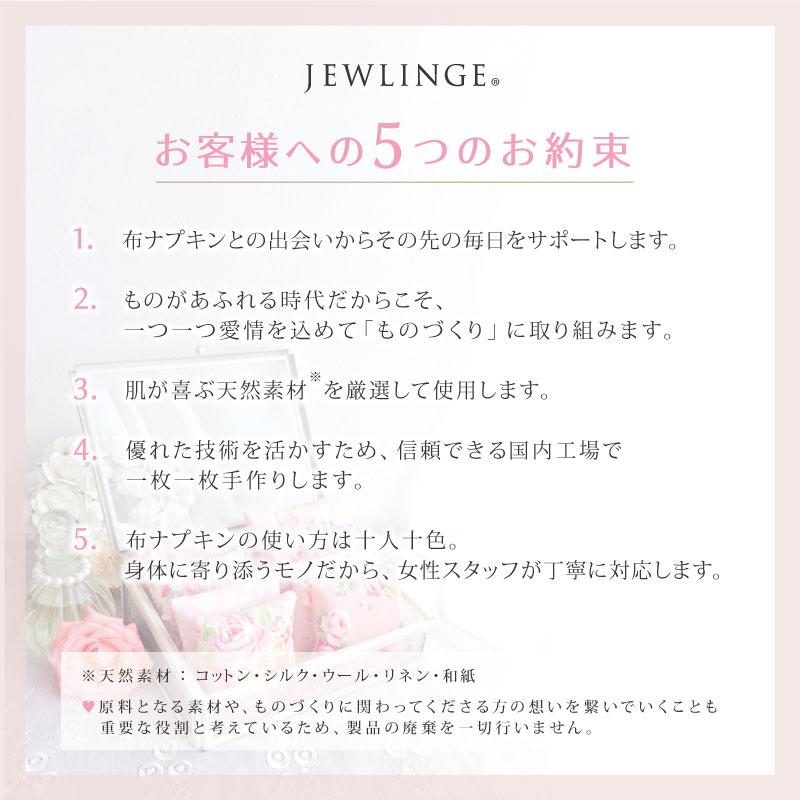 JEWLINGE 防臭チャック袋 [ Mサイズ 5枚/布ナプキン持ち運び用/ スタンド自立型/] 消臭 防水加工 (日本製)