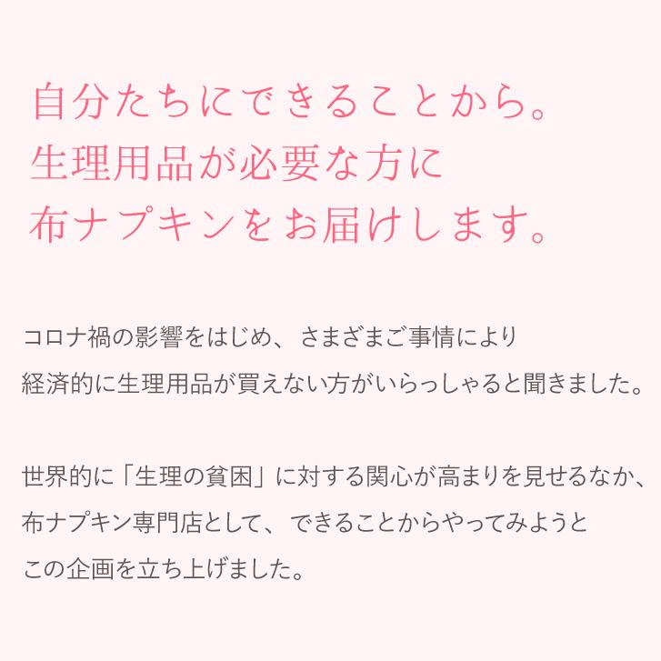 【生理応援プロジェクト/100セット限定】布ナプキンお試し3枚セット 日本製 メール便送料無料