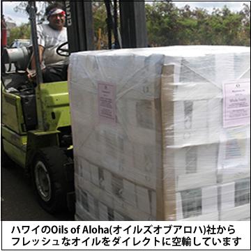 マカダミアナッツオイル375ml (360g)【オイルズオブアロハ】