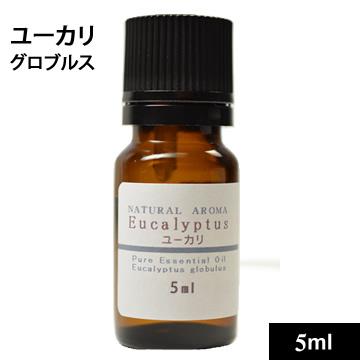 ユーカリ・グロブルス 5ml【ゆうパケットOK】