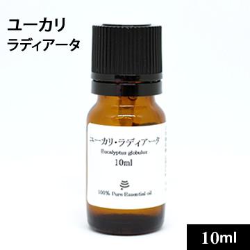 ユーカリ・ラディアータ10ml【ゆうパケットOK】