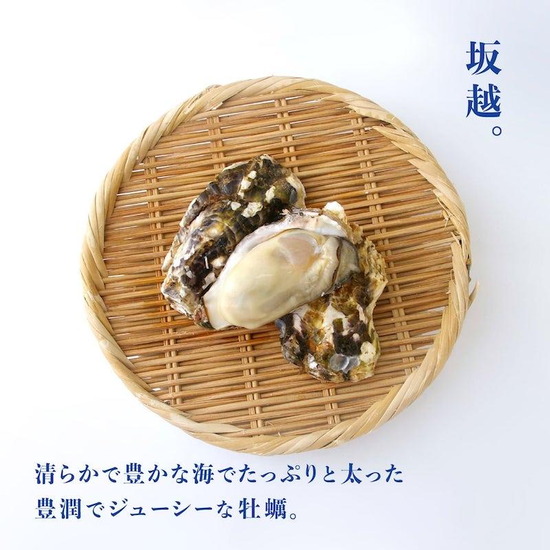 坂越産 一年牡蠣の魅力