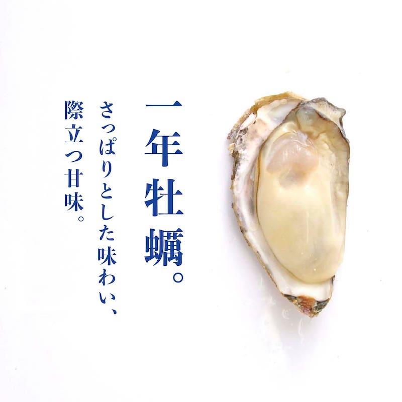 一年牡蠣の魅力