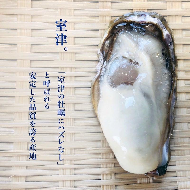 室津の一年牡蠣の魅力