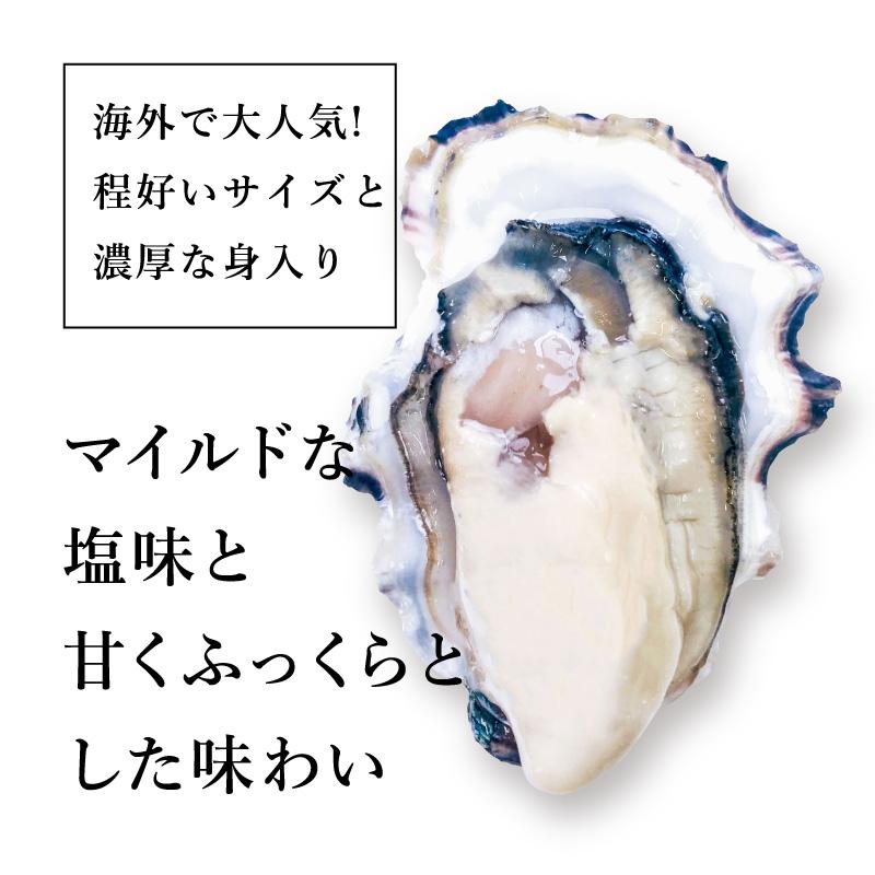 """《アメリカ ワシントン州産》真牡蠣 """"ピュアブルー""""6個より承ります"""