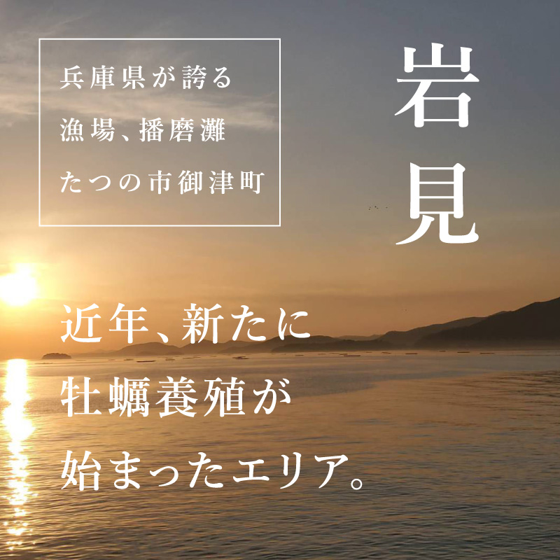 """《兵庫県岩見産》真牡蠣 播磨灘の""""一年牡蠣""""6個より承ります"""