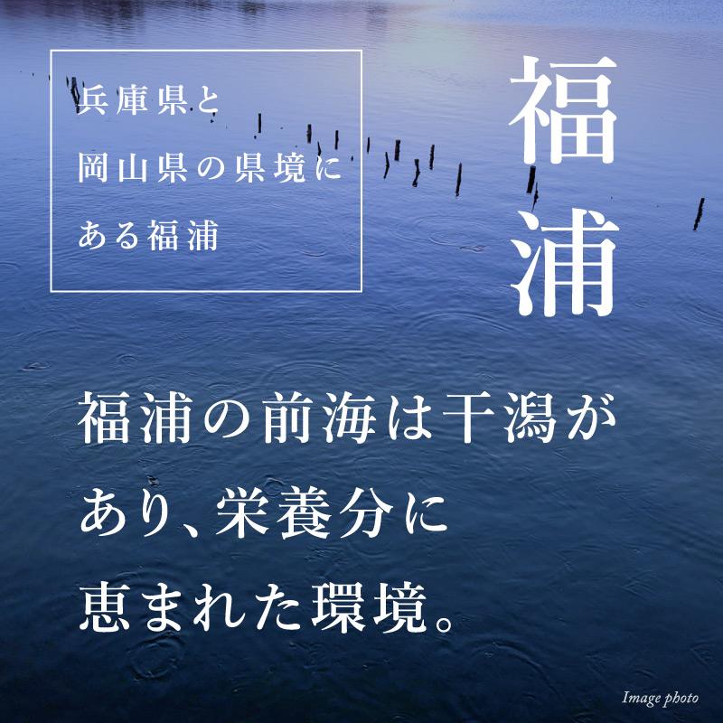 """《兵庫県福浦産》真牡蠣 播磨灘の""""一年牡蠣""""6個より承ります"""