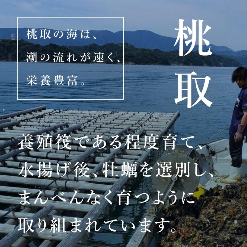 """《三重県桃取産》真牡蠣 """"桃小町""""6個より承ります"""