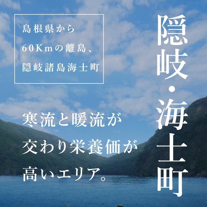 """《島根県海士町産》岩牡蠣 """"春香""""4個より承ります"""