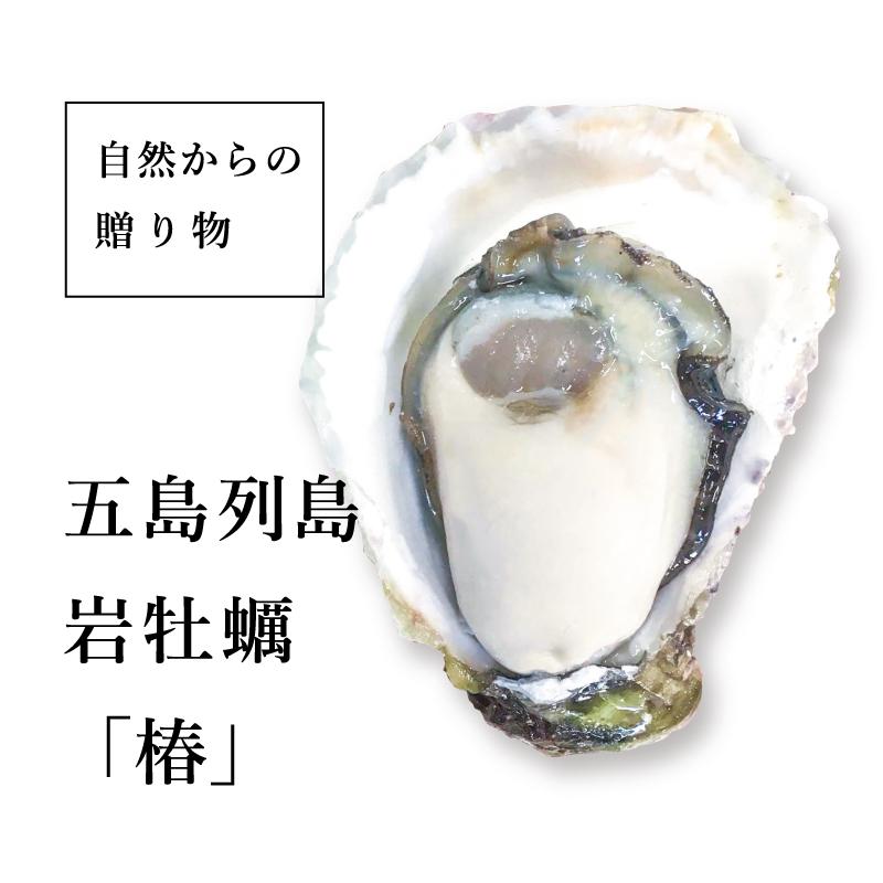 """《長崎県五島列島産》岩牡蠣 """"椿""""4個より承ります"""