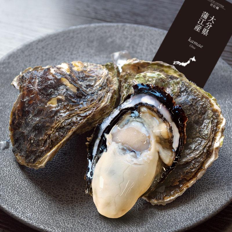 《大分県 蒲江産》岩牡蠣 4個より承ります