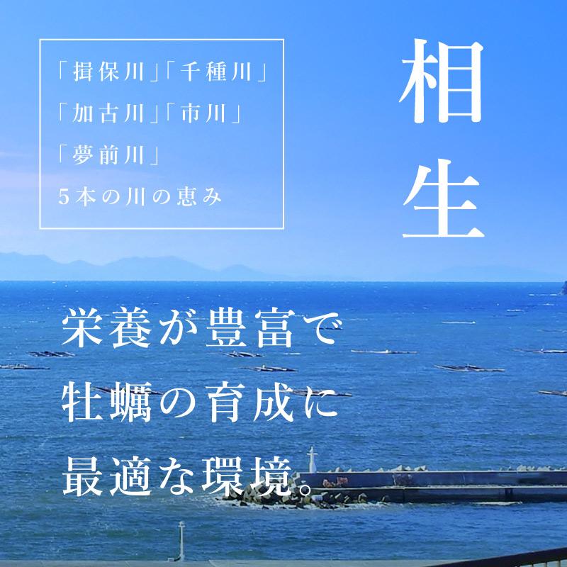 《兵庫県相生産》岩牡蠣 4個より承ります