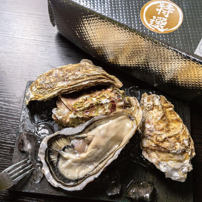 【ギフトに最適】e-oyster「特選印」真牡蠣16個のセット