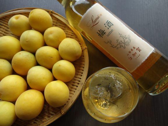 ルミエール ワイン仕込みの梅酒 白加賀