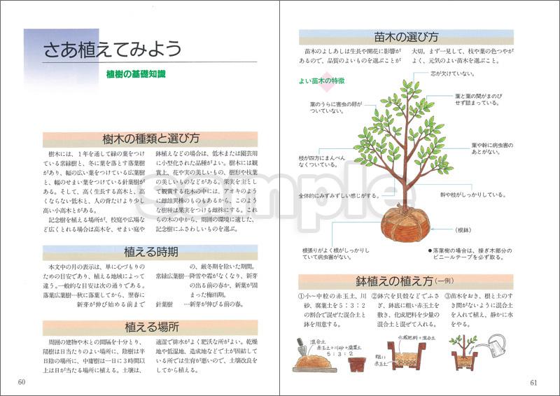 木を植えよう —記念樹にふさわしい木とそのいわれ—
