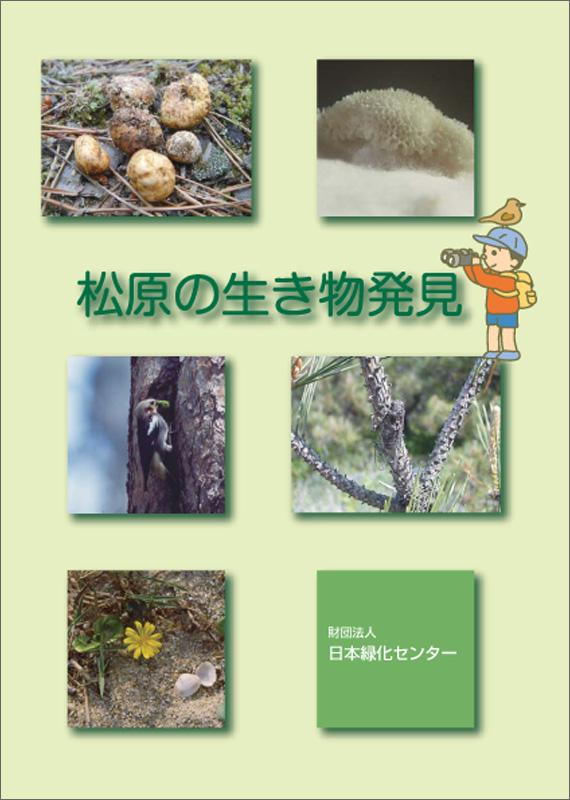 松原の生き物発見