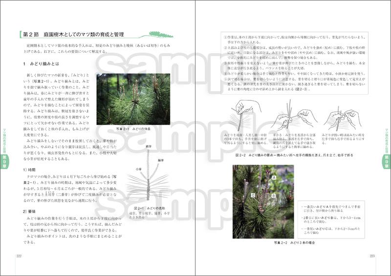 松保護士の手引き(改訂2版)