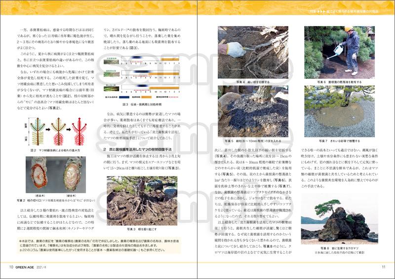 グリーン・エージ2021年4月号(庭でよく見られる樹木病虫害の対処法)