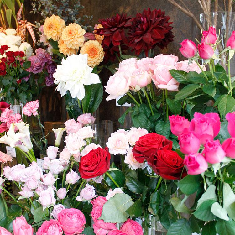 DAY&FLOWER 母の日 Jewelbox arangement(M)JBM-rp01【送料込】