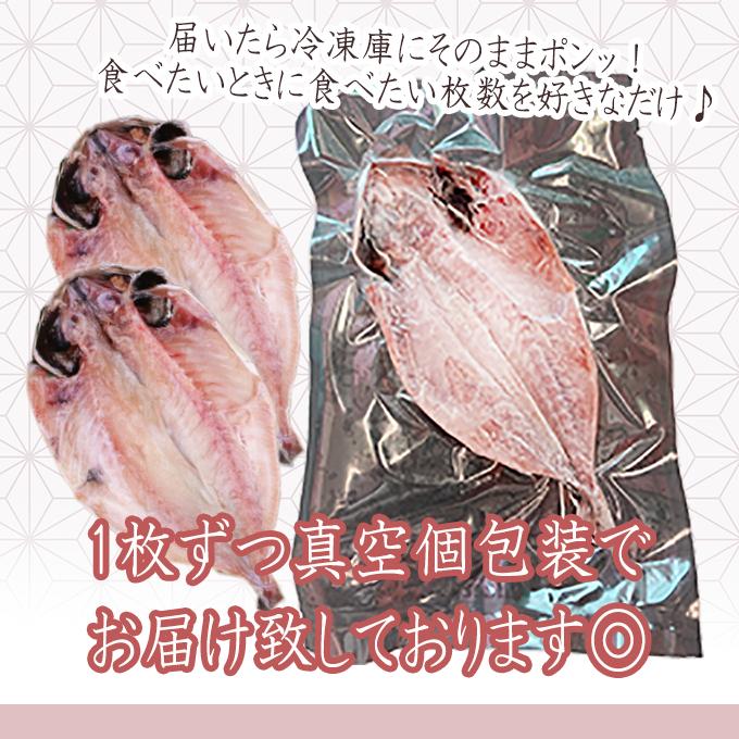 小田原干物「名物アジ干物 大満喫10枚セット」