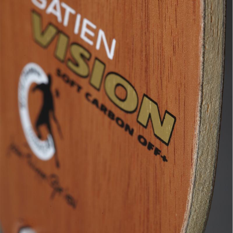 ガシアン-ビジョン ソフトカーボン(GATIEN VISION SOFT CARBON)