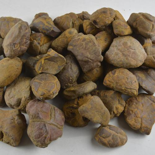 亀甲石(きこうせき)10kg