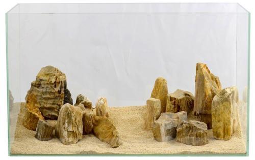 木化石(もくかせき)10kg