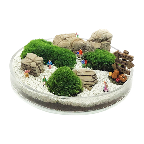 飾り石 らかん石