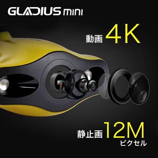 【販売休止中】GLADIUS MINI M2コントローラー仕様 国内正規品 CHASING INNOVATION 100mケーブル