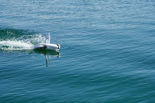 パワードルフィン (PowerDolphin)