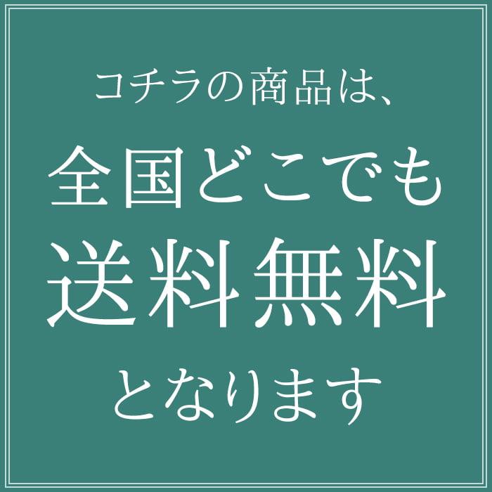 ブリーフケース ビジネスバッグ 日本製 豊岡製鞄 メンズ レディース B4 PVC 大開き 千鳥格子 レトロ 細マチ幅 通勤 出張 黒 KBN22293 ハミルトン HAMILTON 送料無料