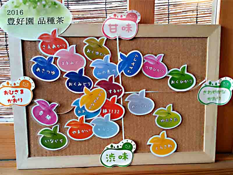品種茶栽培数日本一「山間地茶農家の異端児」豊好園が送る 品種茶セット8種